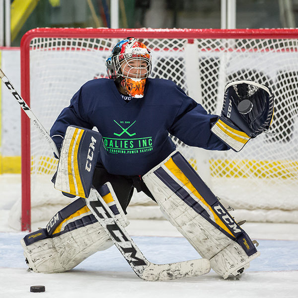 goalie camp wisconsin, goalie camp michigan, hockey camp wisconsin, hockey camp michigan, hockey training michigan, hockey training wisconsin